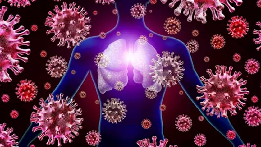 Los linfocitos son célular encargadas de la defensa del cuerpo frente a virus.