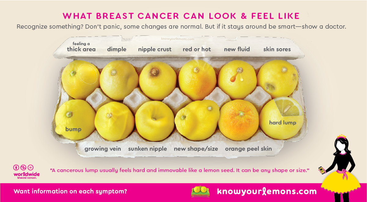 Social Media Marketing Campaign Examples of knowyourlemons.com