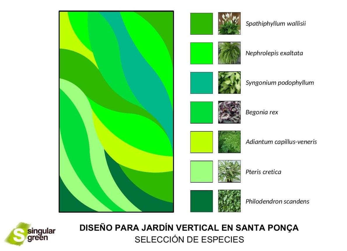 Selección de especies jardín vertical