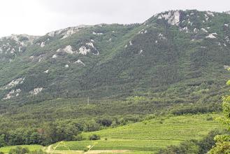 Photo: Widok z kempu na góry i winnice
