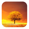 Awesome Land Pro LiveWallpaper icon