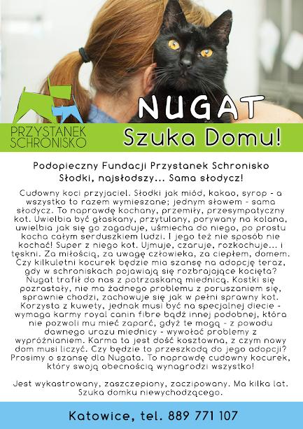 Firmówka Nugat