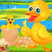 Duckling Pet Care & Hatching