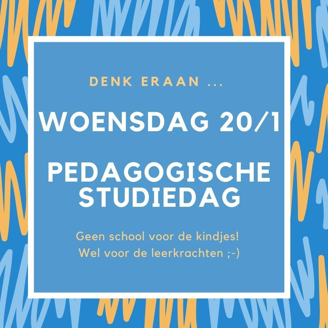 Pedagogische studiedag 20/1