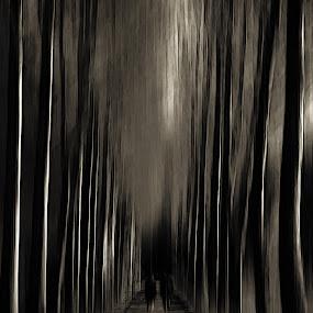 Walk into the darkness by Jens Klappenecker-Dircks - Digital Art Places