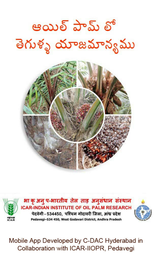 Oil Palm Diseases Telugu- screenshot