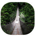 Relax Forest~Meditation sounds icon