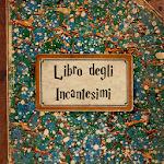 Libro Incantesimi Harry Potter Icon