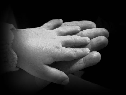 armonia ed equilibrio di padre in figlio.... di zanshin