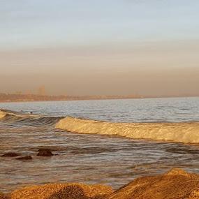 landscape by Carmen Hahn - Landscapes Beaches
