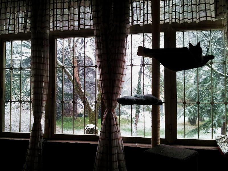 La Veranda sul Parco... di Astrid Tomada