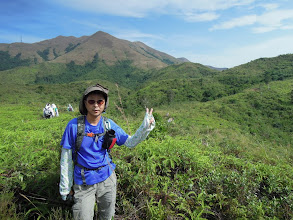 Photo: 紅花嶺