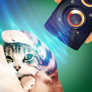 Pet Stunner Simulator for PC and MAC