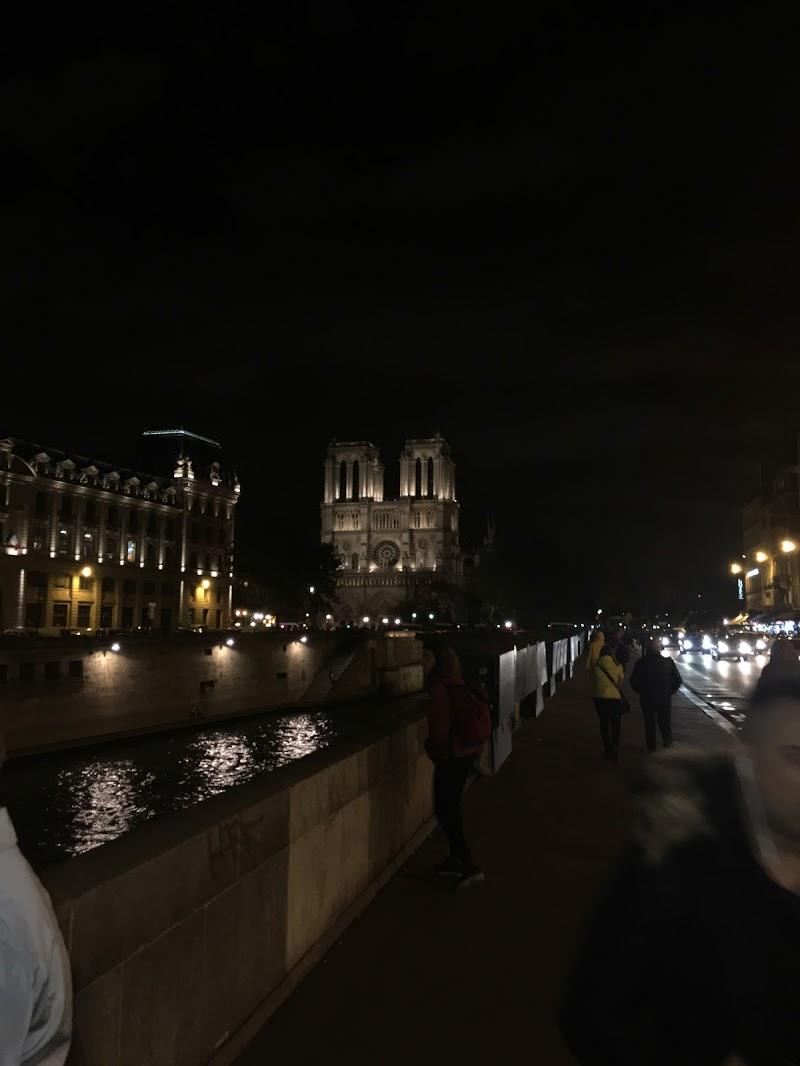 Notre Dame di giorgio43