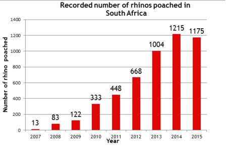 SouthAfricaRhinoPoaching2015