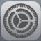 iPad settings icon