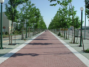 Photo: The Athens Olympic Village - View 1