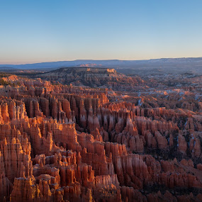 Bryce Early Light by Ruben Parra - Landscapes Caves & Formations ( orange, national park, desert, utah, bryce, canyon, hoodoos, rock formation, sunrise, landscape, sunlight )