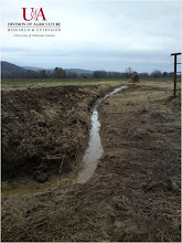 Photo: Temporary ditch to drain flood water (11-1-10)