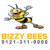 Bizzy Bees Cars