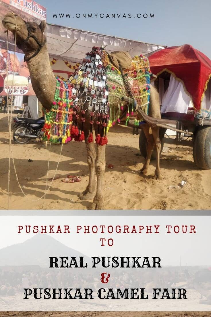pinterest+image+for+pushkar+pictures+travel+blog