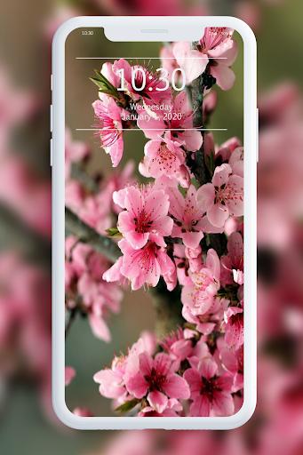 Spring Wallpapers 1.1 screenshots 4
