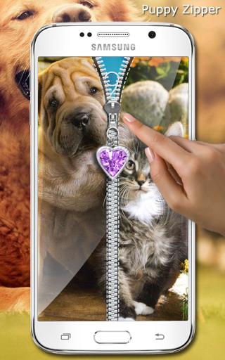 玩免費工具APP|下載可爱的小狗拉链锁 app不用錢|硬是要APP