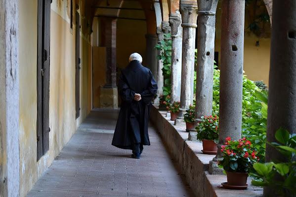 la solitudine del monaco di renzo brazzolotto