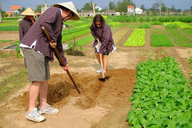 Farming in Hoi An