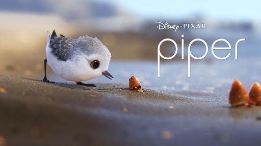 piper clip pixar short film youtube
