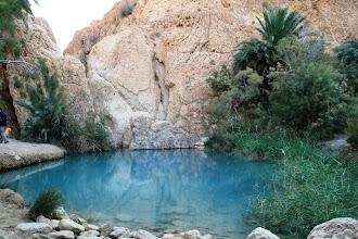 Photo: Oasis de montaña de Chebika