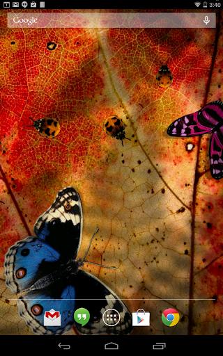 Friendly Bugs Live Wallpaper screenshot 6