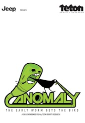 Anomaly: The Early Worm Gets the Bird