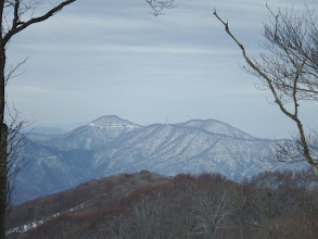 ホノケ山・高頭山アップ