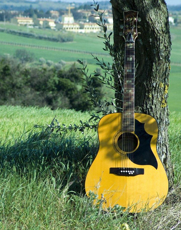 La mia chitarra di wally
