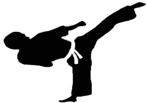 跆拳道培訓計劃