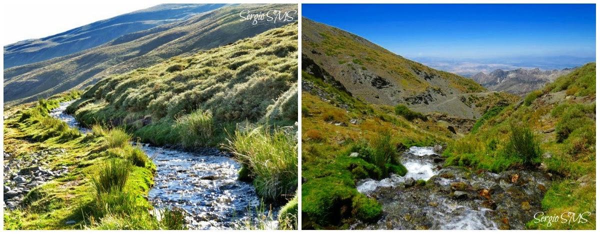 Acequia de los helechos, P.N. Sierra Nevada (Fotos de Sergio SMS)