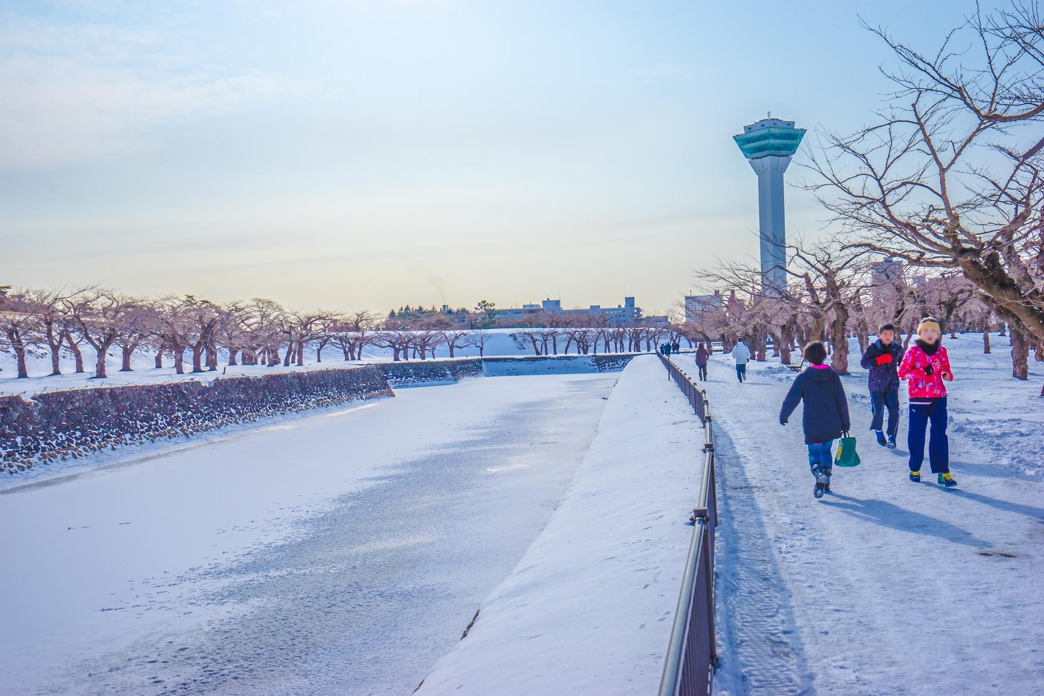 Hakodate Goryokaku Tower2