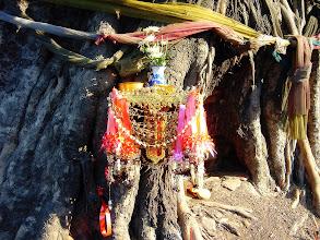 Photo: Bodhi Tree Shrine