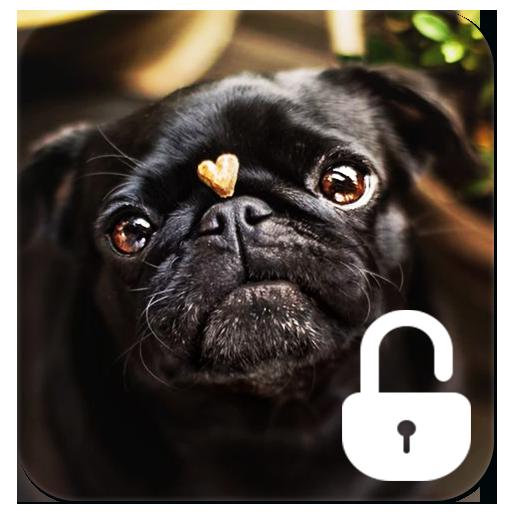 Pug Dog Screen Lock