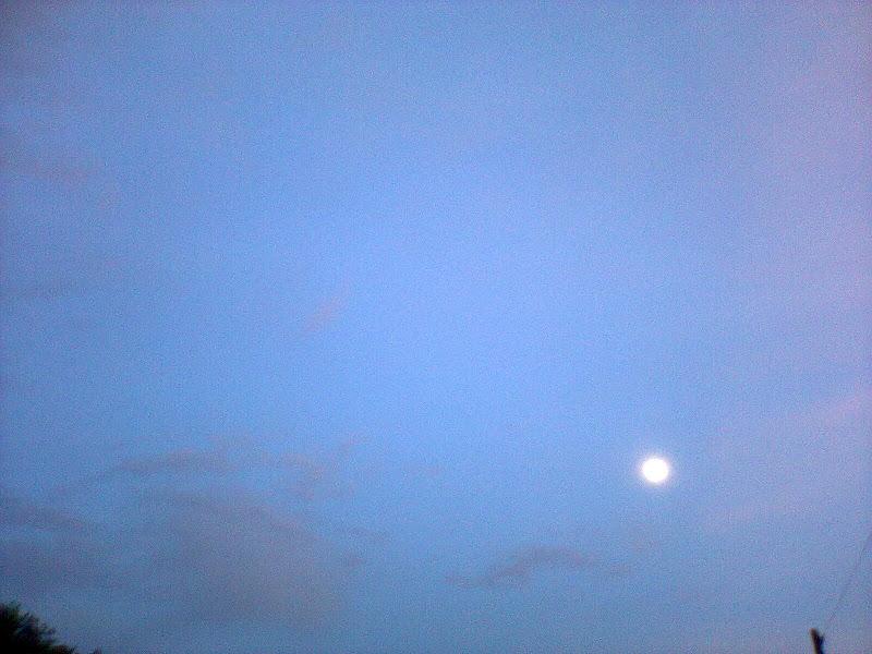Photo: luna de día