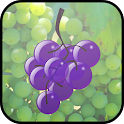 Vineyard Grape Grabbers icon