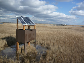 Photo: Solar panels charge a battery that powers the cam and transmitter