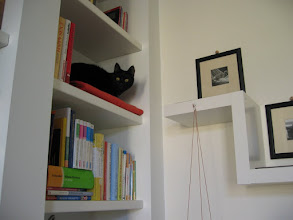 Photo: Ikea-Regal (rechts) VOR der Verschönerung (Katzenzimmer)