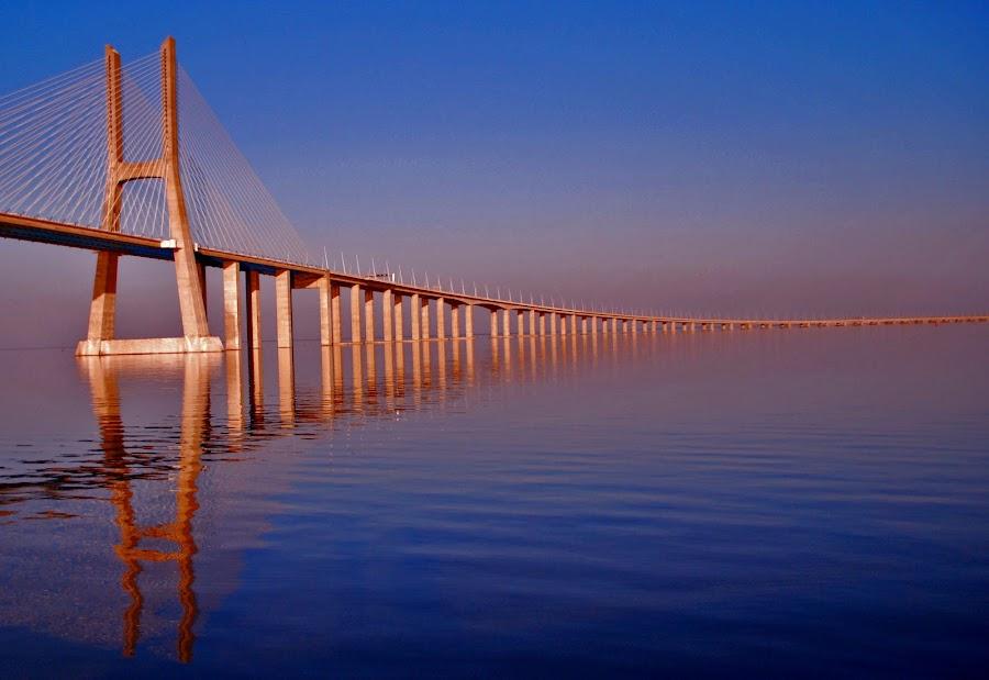 Vasco da Gama Bridge. Lisbon by João Ferreira - Buildings & Architecture Bridges & Suspended Structures ( pwcbridges )