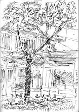 Photo: 樹2011.02.04鋼筆 藉著用不完的人力資源,花草樹木將監獄打造得像公園一樣,但終歸還是囚人的監獄呀!
