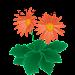 花言葉事典 icon