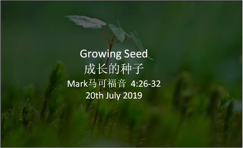 Growing Seed  成长的种子