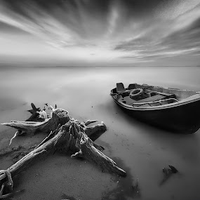 Lonely Sojourn by Amir  Rodof - Landscapes Beaches