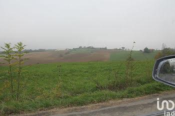 terrain à Rabastens (81)